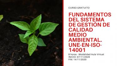 Curso FUNDAMENTOS DEL SISTEMA DE GESTIÓN DE CALIDAD MEDIO AMBIENTAL. UNE-EN-ISO-14001