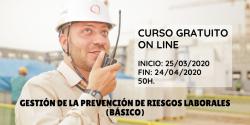 Curso Básico de Gestión de la Prevención de Riesgos Laborales